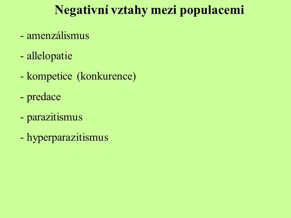 Negativní vztahy mezi populacemi - amenzálismus - allelopatie - kompetice (konkurence) - predace - parazitismus - hyperparazitismus