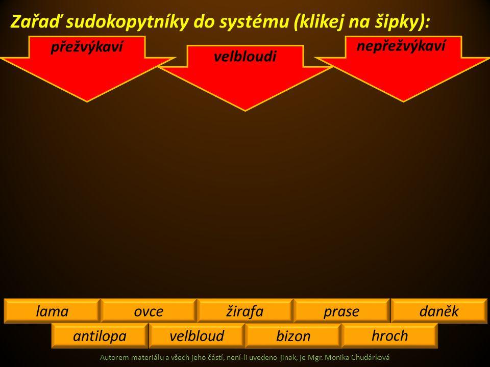 Autorem materiálu a všech jeho částí, není-li uvedeno jinak, je Mgr. Monika Chudárková Zařaď sudokopytníky do systému (klikej na šipky): přežvýkaví ne