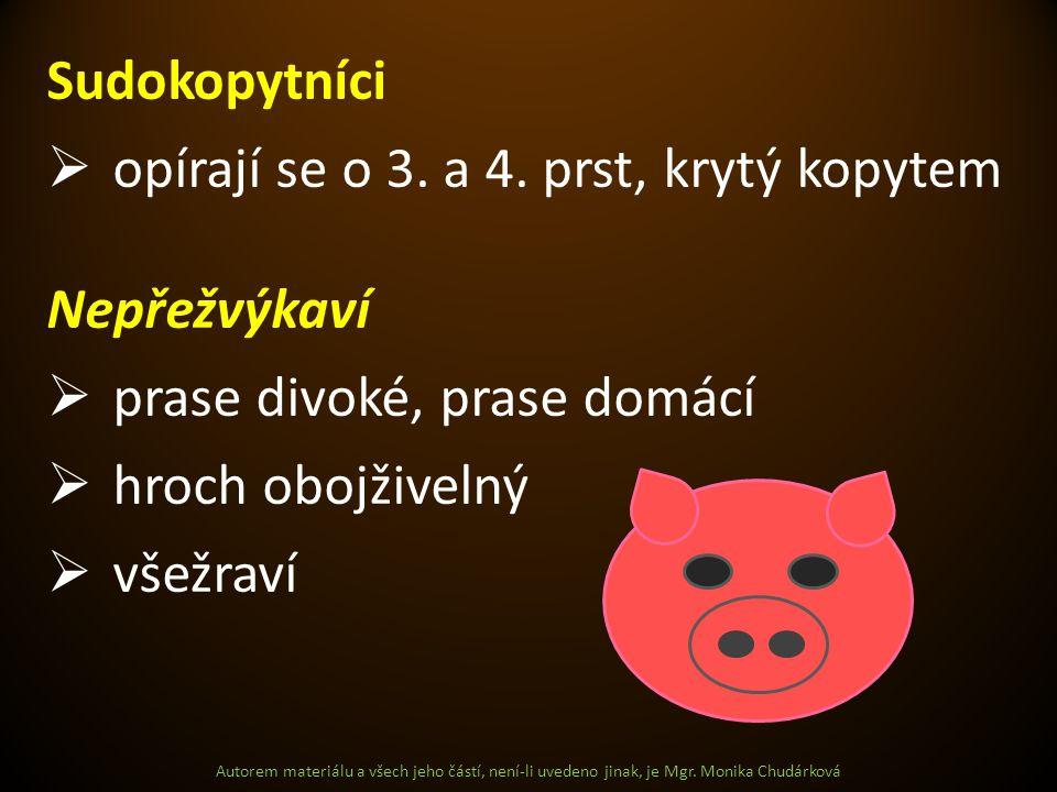 Autorem materiálu a všech jeho částí, není-li uvedeno jinak, je Mgr. Monika Chudárková Sudokopytníci  opírají se o 3. a 4. prst, krytý kopytem Nepřež
