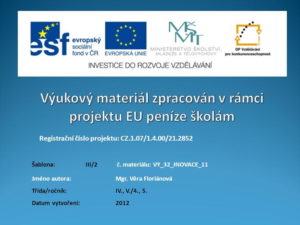 Registrační číslo projektu: CZ.1.07/1.4.00/21.2852 Jméno autora:Mgr.