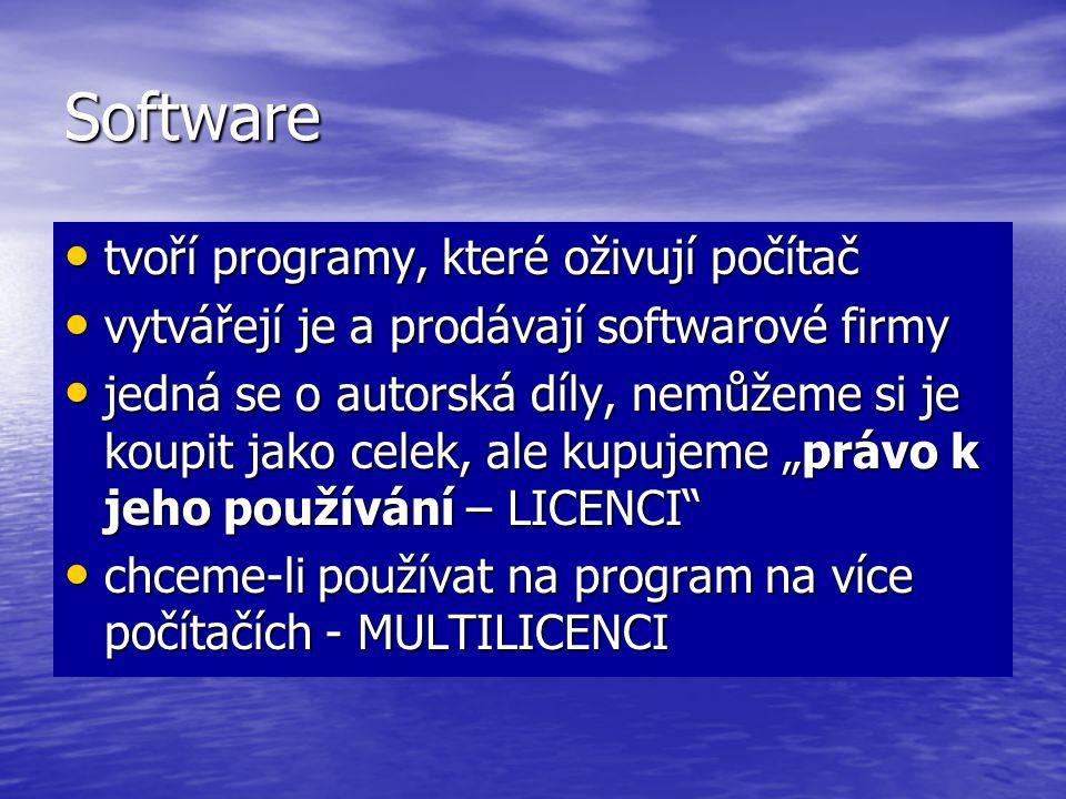 Software tvoří programy, které oživují počítač tvoří programy, které oživují počítač vytvářejí je a prodávají softwarové firmy vytvářejí je a prodávaj
