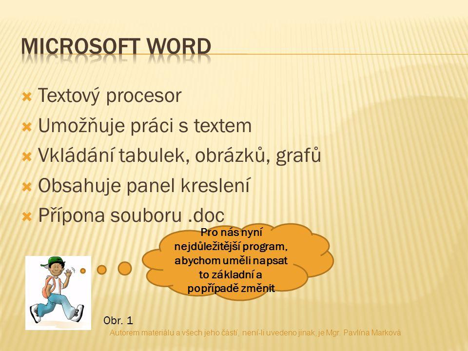  Textový procesor  Umožňuje práci s textem  Vkládání tabulek, obrázků, grafů  Obsahuje panel kreslení  Přípona souboru.doc Pro nás nyní nejdůleži