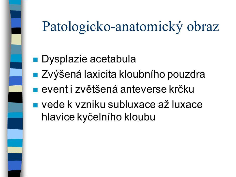 Patologicko-anatomický obraz n Dysplazie acetabula n Zvýšená laxicita kloubního pouzdra n event i zvětšená anteverse krčku n vede k vzniku subluxace a