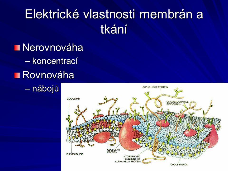 Elektrické vlastnosti membrán a tkání Nerovnováha –koncentrací Rovnováha –nábojů