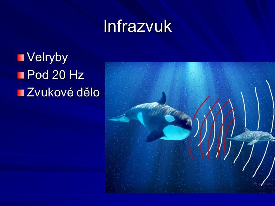 Infrazvuk Velryby Pod 20 Hz Zvukové dělo