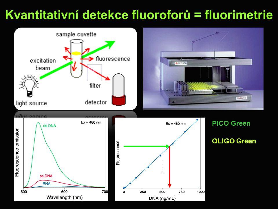 Kvantitativní detekce fluoroforů = fluorimetrie PICO Green OLIGO Green