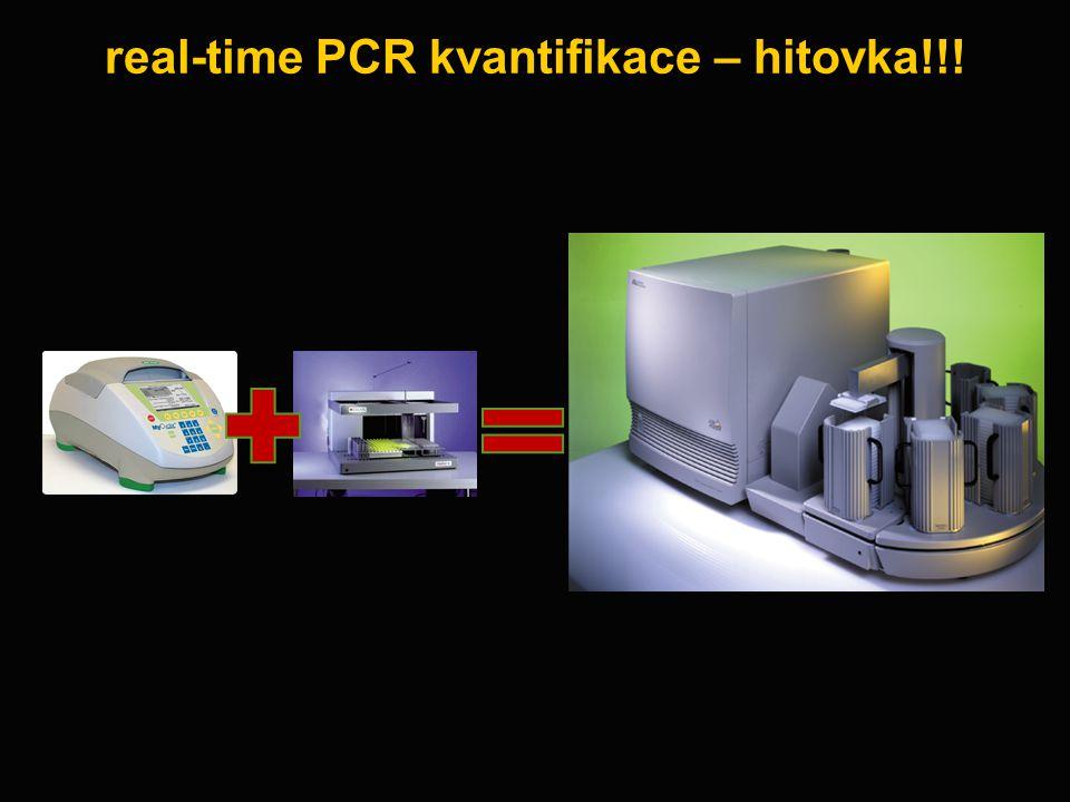 real-time PCR kvantifikace – hitovka!!!