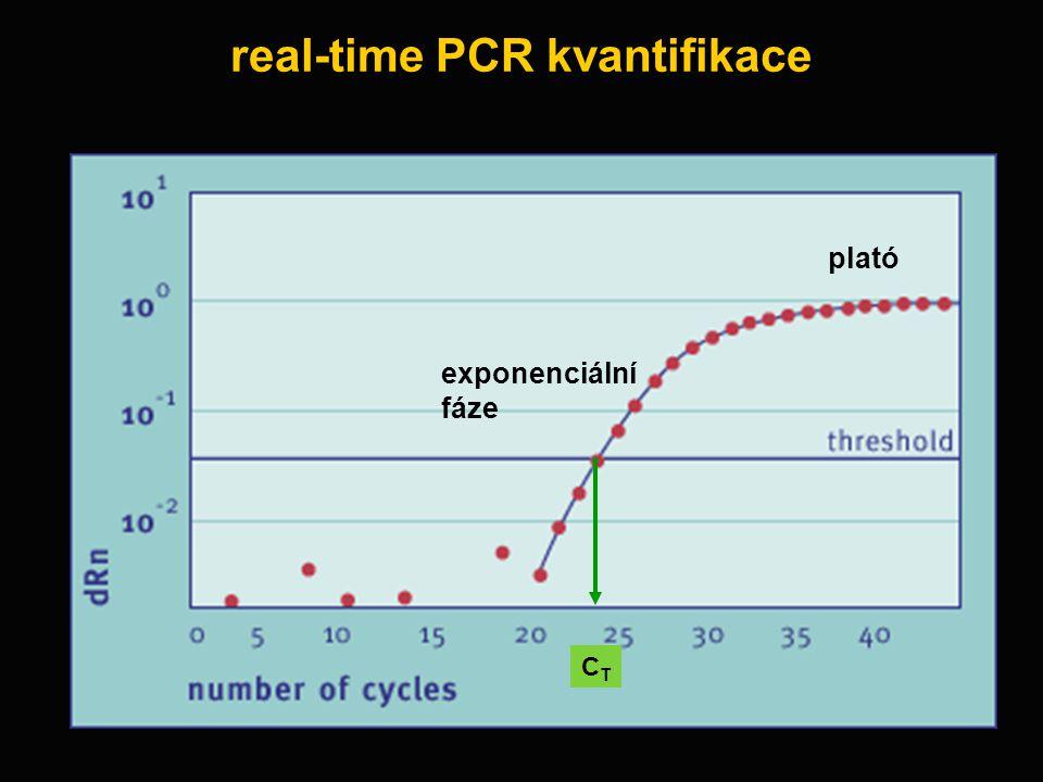 real-time PCR kvantifikace plató exponenciální fáze CTCT