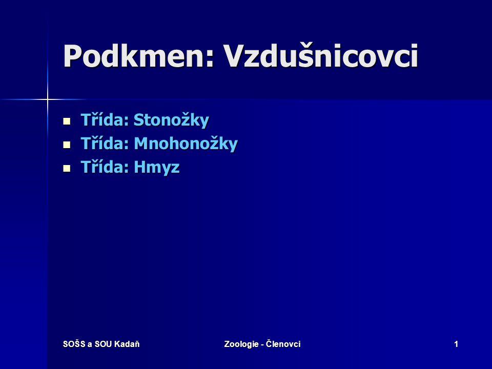 SOŠS a SOU KadaňZoologie - Členovci12 Saranče stěhovavá Zajímavosti: Vzhledem se liší i dospělci, stěhovavá fáze je pestřejší a větší.