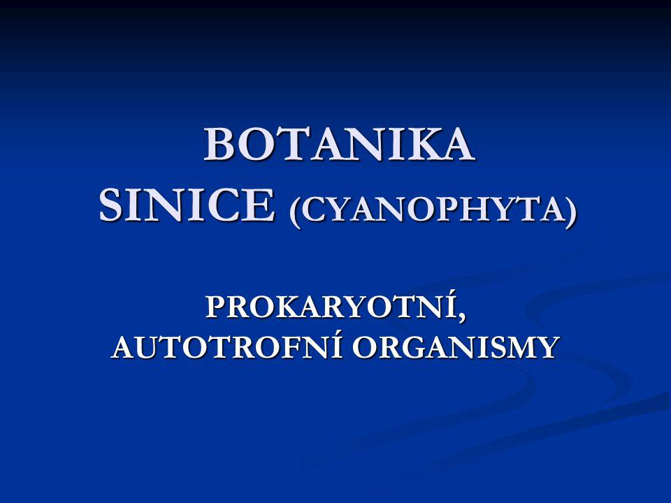 BOTANIKA SINICE (CYANOPHYTA) PROKARYOTNÍ, AUTOTROFNÍ ORGANISMY