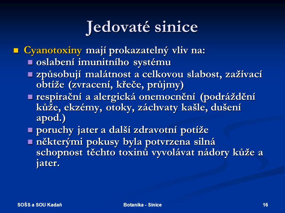 SOŠS a SOU Kadaň 16Botanika - Sinice Jedovaté sinice Cyanotoxiny mají prokazatelný vliv na: Cyanotoxiny mají prokazatelný vliv na: oslabení imunitního systému oslabení imunitního systému způsobují malátnost a celkovou slabost, zažívací obtíže (zvracení, křeče, průjmy) způsobují malátnost a celkovou slabost, zažívací obtíže (zvracení, křeče, průjmy) respirační a alergická onemocnění (podráždění kůže, ekzémy, otoky, záchvaty kašle, dušení apod.) respirační a alergická onemocnění (podráždění kůže, ekzémy, otoky, záchvaty kašle, dušení apod.) poruchy jater a další zdravotní potíže poruchy jater a další zdravotní potíže některými pokusy byla potvrzena silná schopnost těchto toxinů vyvolávat nádory kůže a jater.