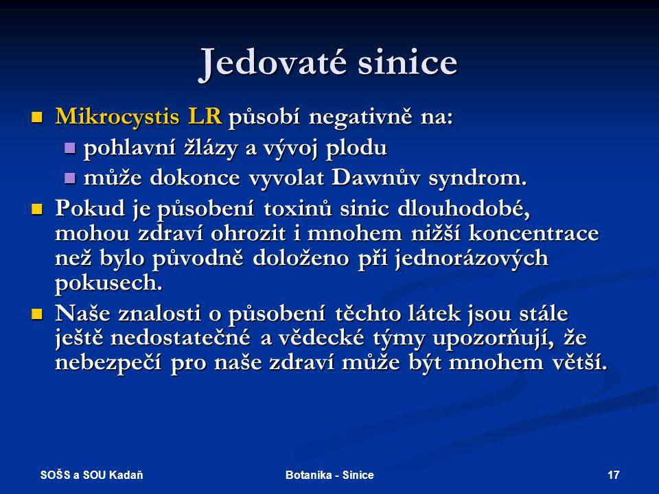 SOŠS a SOU Kadaň 17Botanika - Sinice Jedovaté sinice Mikrocystis LR působí negativně na: Mikrocystis LR působí negativně na: pohlavní žlázy a vývoj plodu pohlavní žlázy a vývoj plodu může dokonce vyvolat Dawnův syndrom.