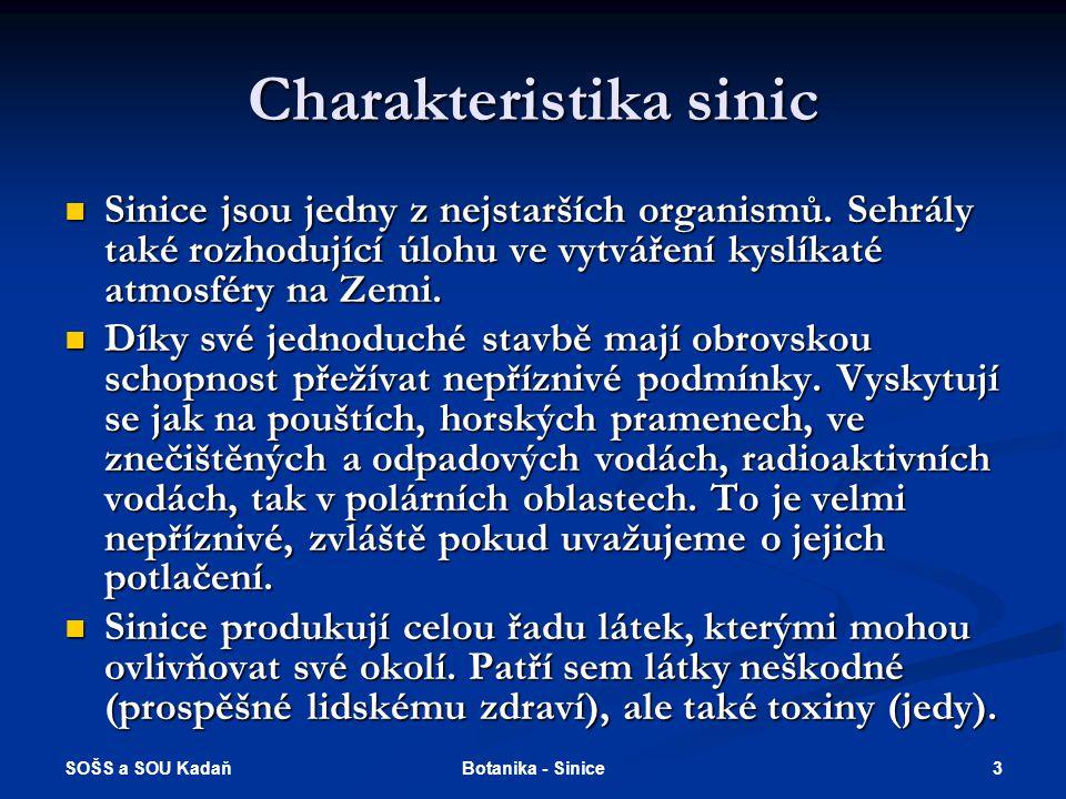 SOŠS a SOU Kadaň 3Botanika - Sinice Charakteristika sinic Sinice jsou jedny z nejstarších organismů.