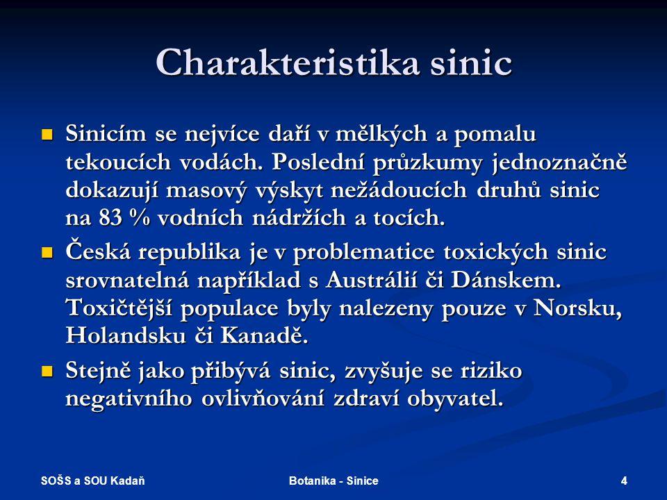 SOŠS a SOU Kadaň 4Botanika - Sinice Charakteristika sinic Sinicím se nejvíce daří v mělkých a pomalu tekoucích vodách.
