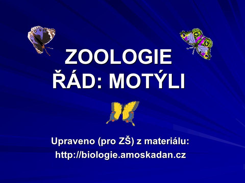 ZOOLOGIE ŘÁD: MOTÝLI Upraveno (pro ZŠ) z materiálu: http://biologie.amoskadan.cz