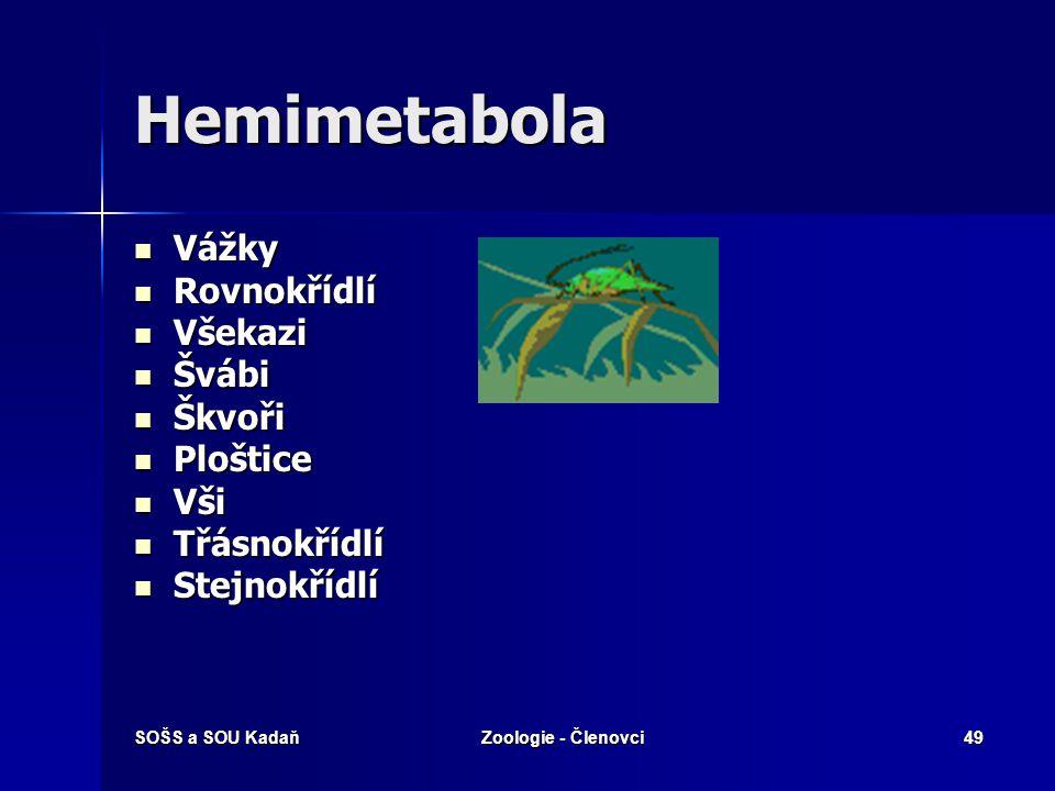 SOŠS a SOU KadaňZoologie - Členovci48 Hemimetabolie Holometabolie Podkmen : Vzdušnicovci