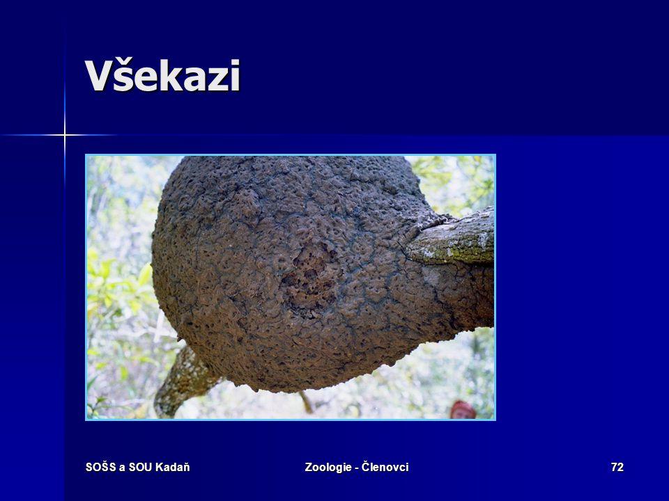 SOŠS a SOU KadaňZoologie - Členovci71 Všekazi