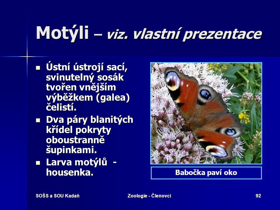 SOŠS a SOU KadaňZoologie - Členovci91 Blechy Dospělé blechy jsou vnějšími, druhotně bezkřídlými (ekto-) parazity ptáků a savců, jejichž krví se živí.
