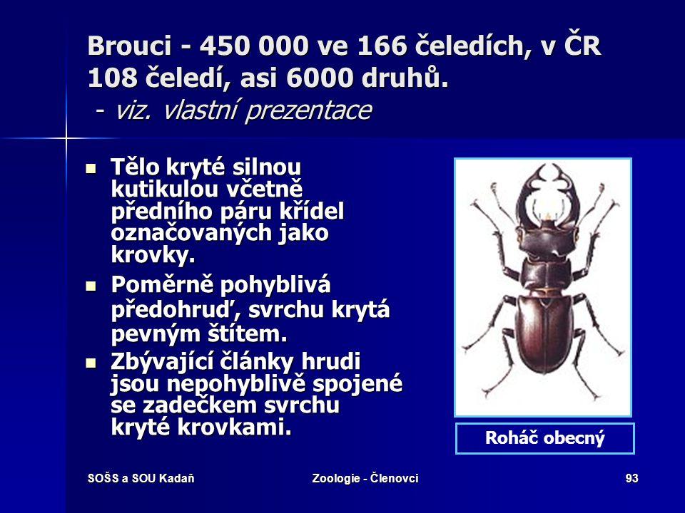 SOŠS a SOU KadaňZoologie - Členovci92 Motýli – viz. vlastní prezentace Ústní ústrojí sací, svinutelný sosák tvořen vnějším výběžkem (galea) čelistí. Ú