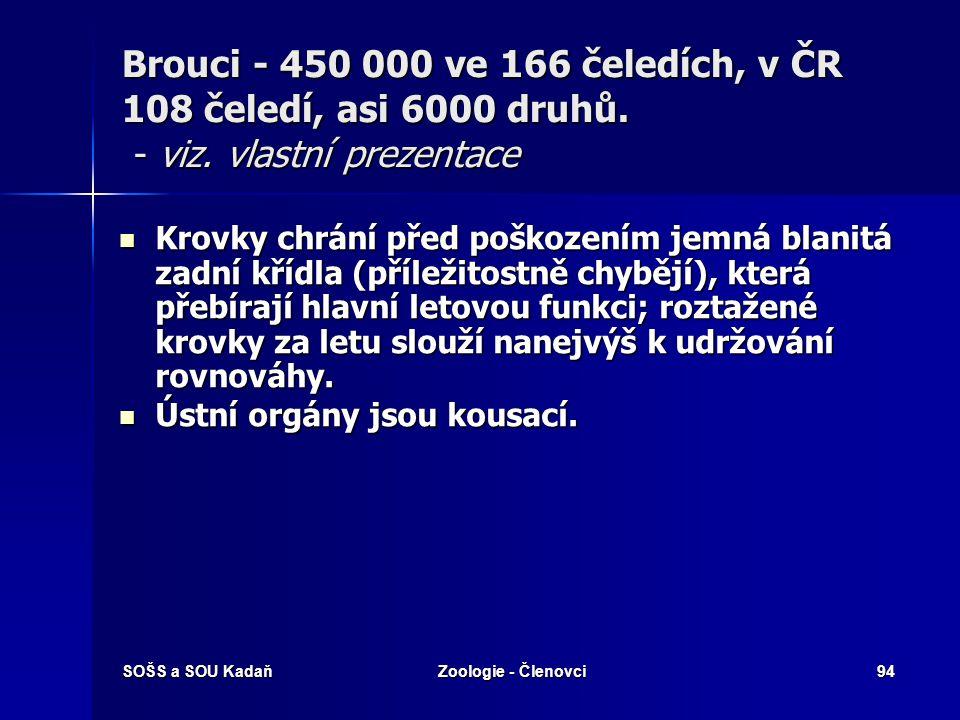 SOŠS a SOU KadaňZoologie - Členovci93 Brouci - 450 000 ve 166 čeledích, v ČR 108 čeledí, asi 6000 druhů. - viz. vlastní prezentace Tělo kryté silnou k