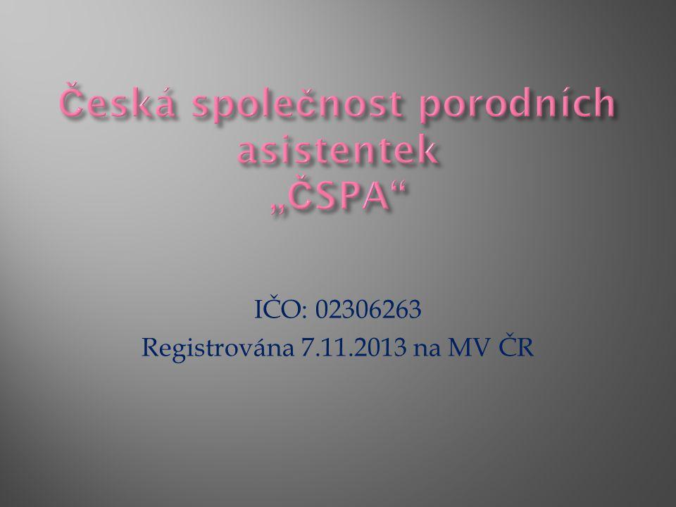 IČO: 02306263 Registrována 7.11.2013 na MV ČR