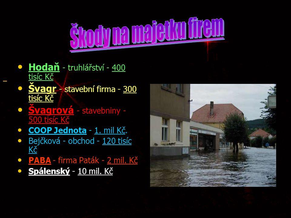 Hodaň - truhlářství - 400 tisíc Kč Hodaň - truhlářství - 400 tisíc Kč Švagr - stavební firma - 300 tisíc Kč Švagr - stavební firma - 300 tisíc Kč Švag