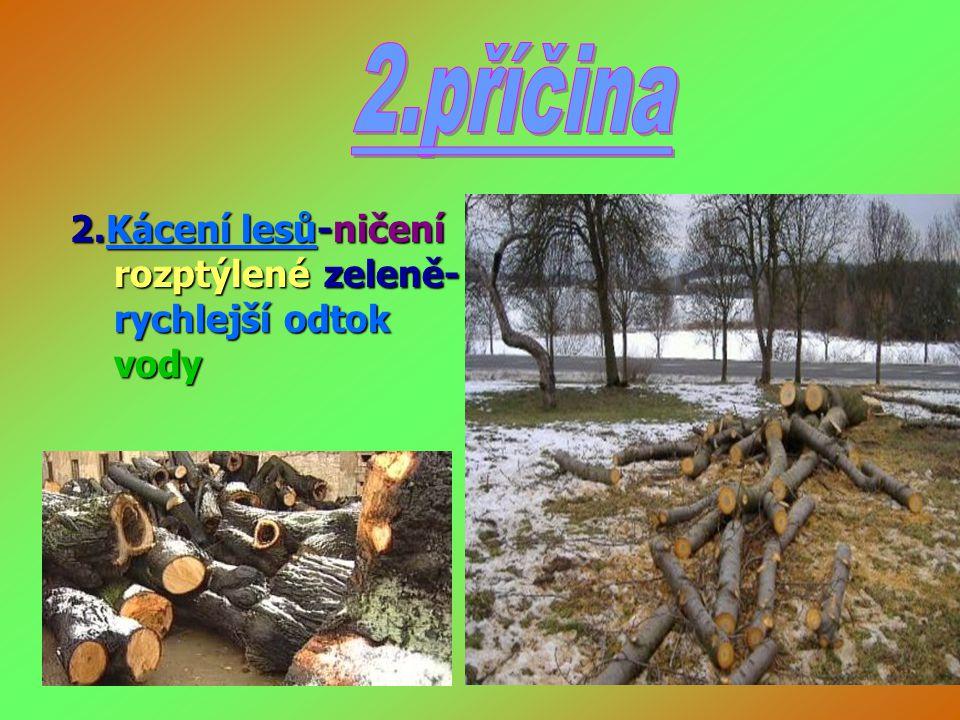 2.Kácení lesů-ničení rozptýlené zeleně- rychlejší odtok vody 2.Kácení lesů-ničení rozptýlené zeleně- rychlejší odtok vody