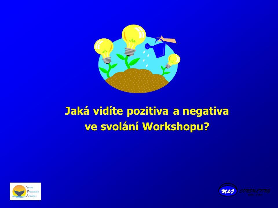 Jaká vidíte pozitiva a negativa ve svolání Workshopu?
