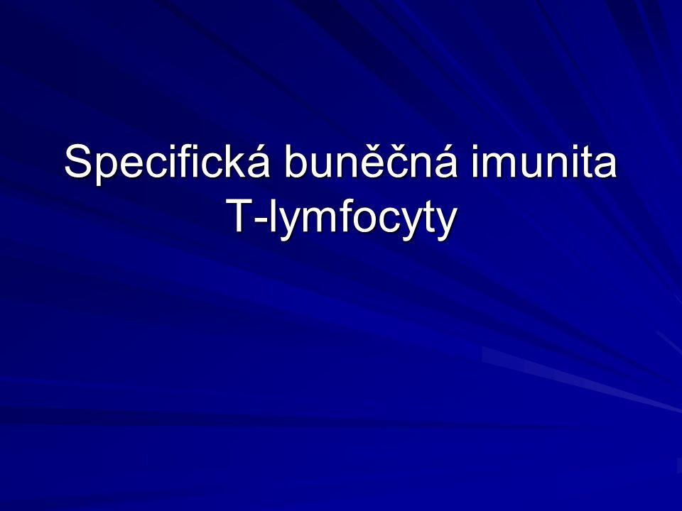 SPECIFICKÁ (ADAPTIVNÍ) IMUNITA Ve fylogenezi známá až u obratlovců Reaguje na každou cizorodou strukturu prostřednictvím vysoce specializovaných molekul –Protilátky (imunoglobuliny) –Antigenně specifické receptory na T-ly Mechanismy specifické imunity –Humorální (protilátky) –Buněčné (T-ly, B-ly)