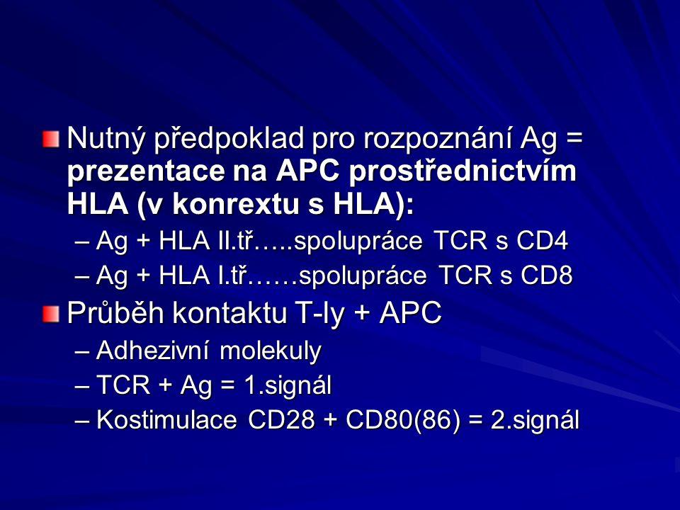 Nutný předpoklad pro rozpoznání Ag = prezentace na APC prostřednictvím HLA (v konrextu s HLA): –Ag + HLA II.tř…..spolupráce TCR s CD4 –Ag + HLA I.tř……