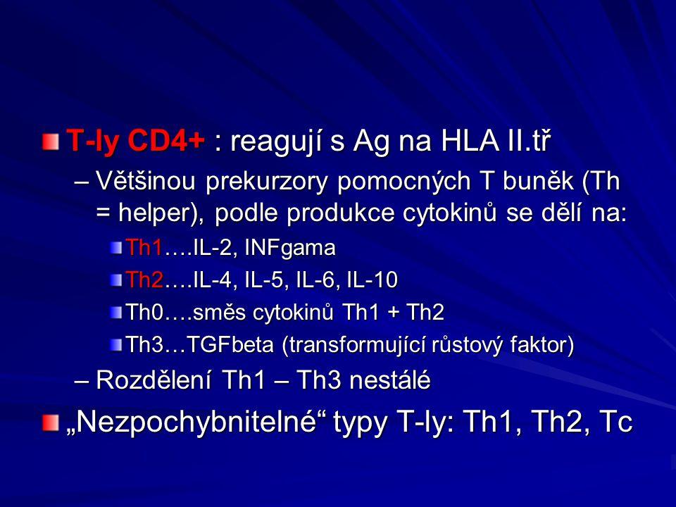 T-ly CD4+ : reagují s Ag na HLA II.tř –Většinou prekurzory pomocných T buněk (Th = helper), podle produkce cytokinů se dělí na: Th1….IL-2, INFgama Th2