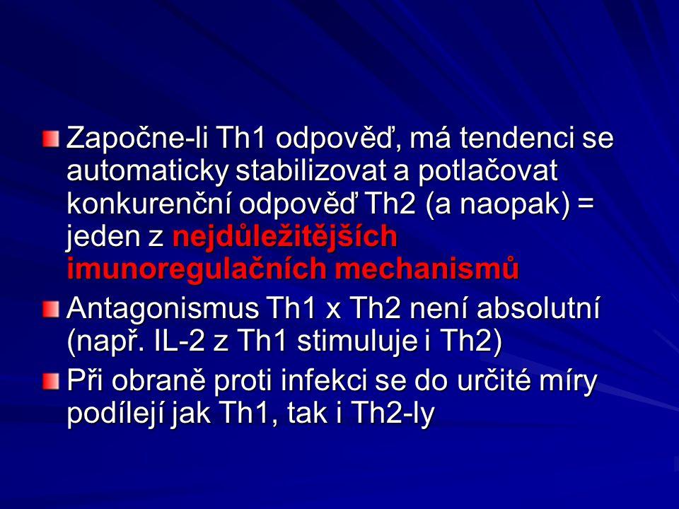 Započne-li Th1 odpověď, má tendenci se automaticky stabilizovat a potlačovat konkurenční odpověď Th2 (a naopak) = jeden z nejdůležitějších imunoregula