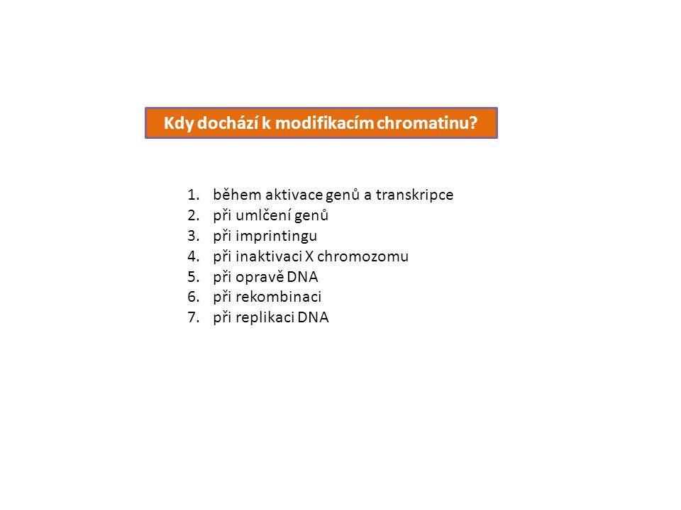 Kdy dochází k modifikacím chromatinu? 1.během aktivace genů a transkripce 2.při umlčení genů 3.při imprintingu 4.při inaktivaci X chromozomu 5.při opr