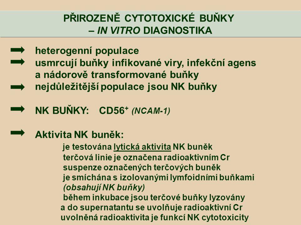 heterogenní populace usmrcují buňky infikované viry, infekční agens a nádorově transformované buňky nejdůležitější populace jsou NK buňky NK BUŇKY: CD