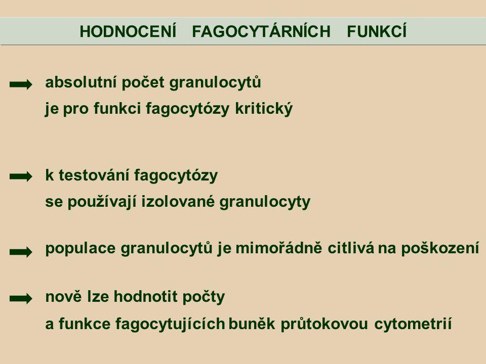 absolutní počet granulocytů je pro funkci fagocytózy kritický k testování fagocytózy se používají izolované granulocyty populace granulocytů je mimořá
