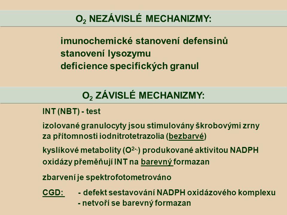 INT (NBT) - test izolované granulocyty jsou stimulovány škrobovými zrny za přítomnosti iodnitrotetrazolia (bezbarvé) kyslíkové metabolity (O 2-. ) pro
