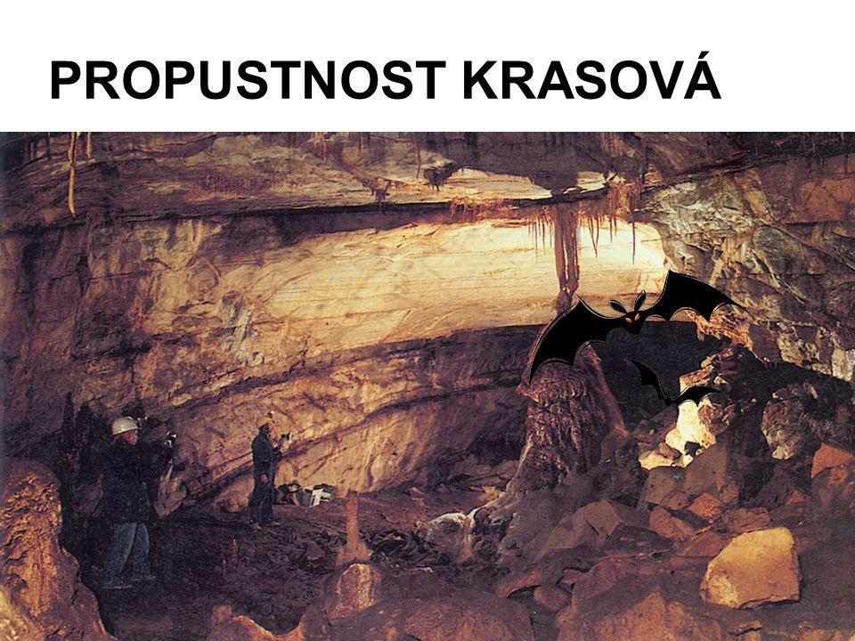 PROPUSTNOST KRASOVÁ