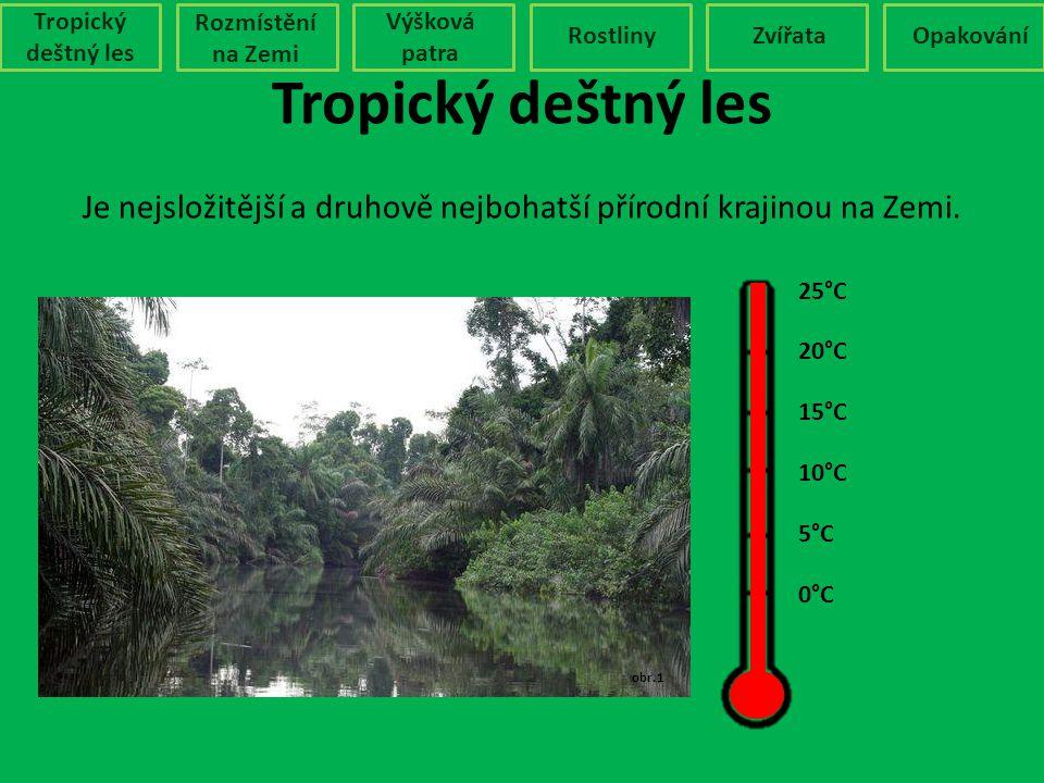 Tropický deštný les Rozmístění na Zemi Výšková patra RostlinyZvířataOpakování Je nejsložitější a druhově nejbohatší přírodní krajinou na Zemi. Podnebí