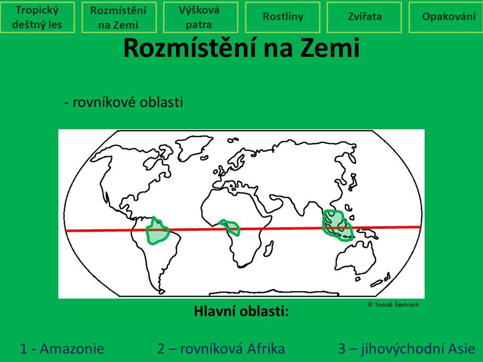 © Tomáš Šantroch Rozmístění na Zemi Tropický deštný les Rozmístění na Zemi Výšková patra RostlinyZvířataOpakování - rovníkové oblasti Hlavní oblasti:
