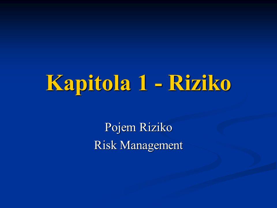 Kapitola 1 - Riziko Pojem Riziko Risk Management