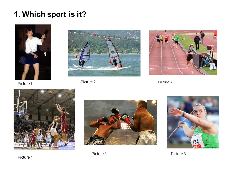 1. Which sport is it Picture 1 Picture 2 Picture 4 Picture 5 Picture 3 Picture 6