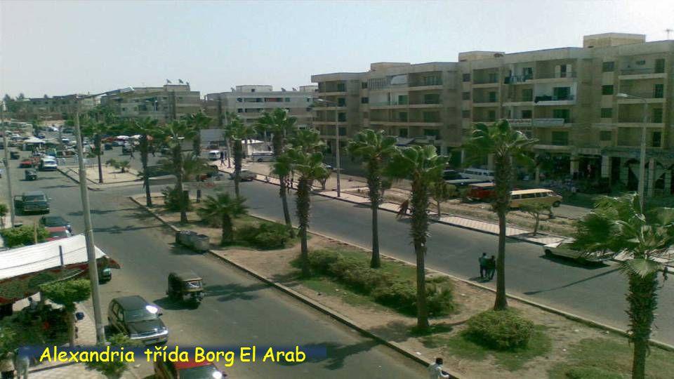 Alexandria-Sawary
