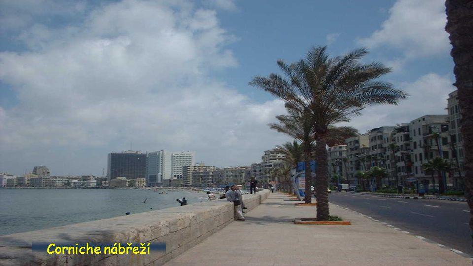Alexandria centrum