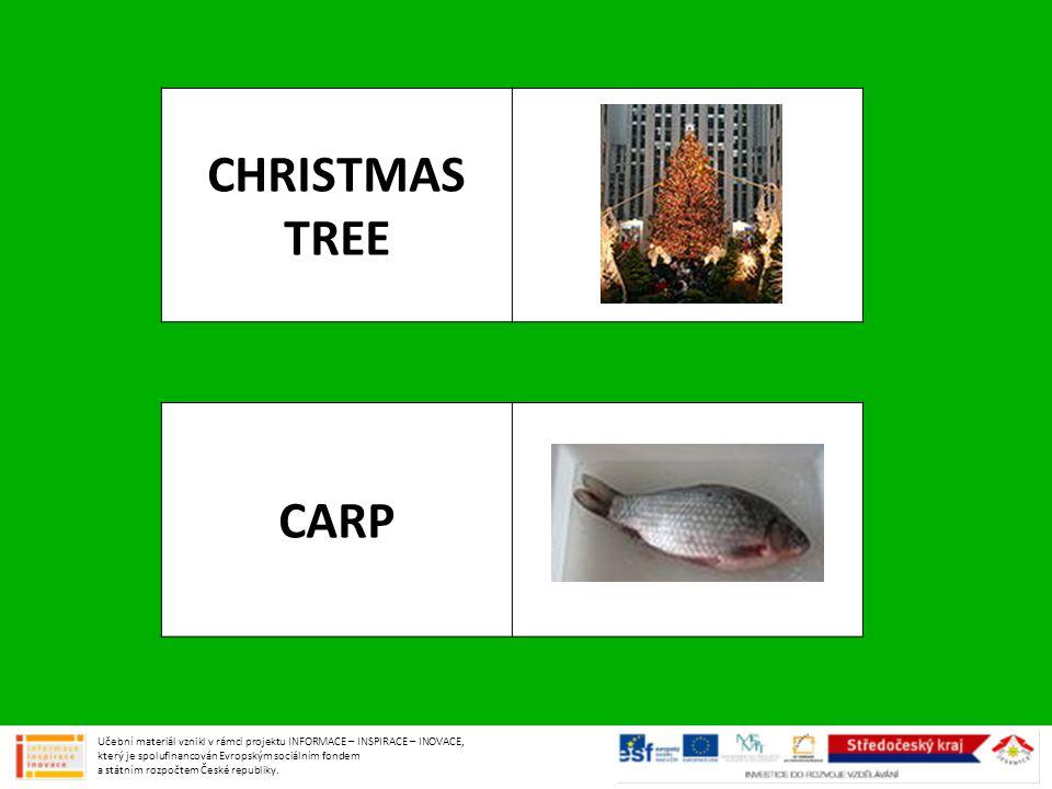 CHRISTMAS TREE CARP Učební materiál vznikl v rámci projektu INFORMACE – INSPIRACE – INOVACE, který je spolufinancován Evropským sociálním fondem a stá