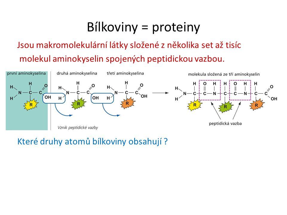 Bílkoviny = proteiny Jsou makromolekulární látky složené z několika set až tisíc molekul aminokyselin spojených peptidickou vazbou.