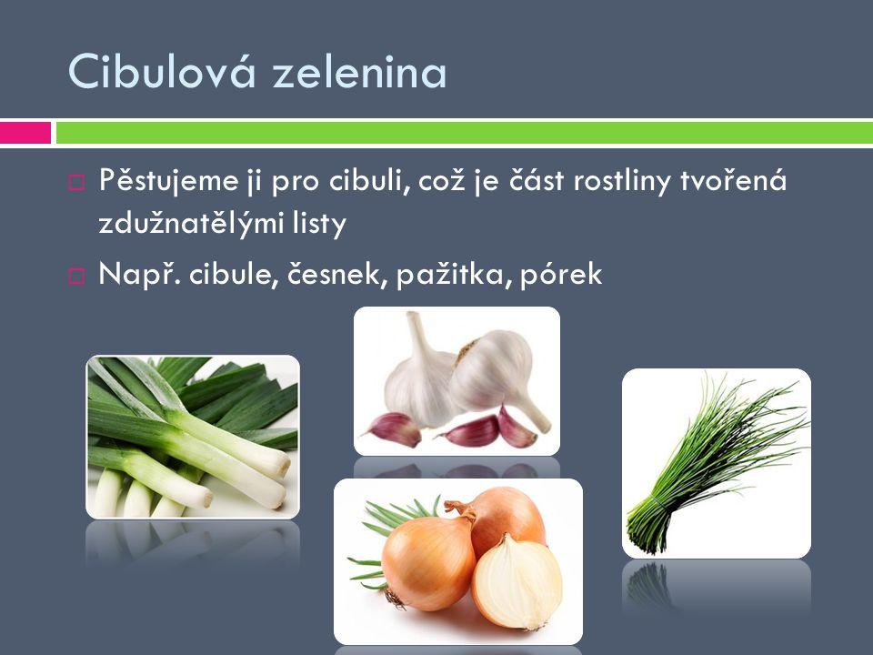 Cibulová zelenina  Pěstujeme ji pro cibuli, což je část rostliny tvořená zdužnatělými listy  Např. cibule, česnek, pažitka, pórek