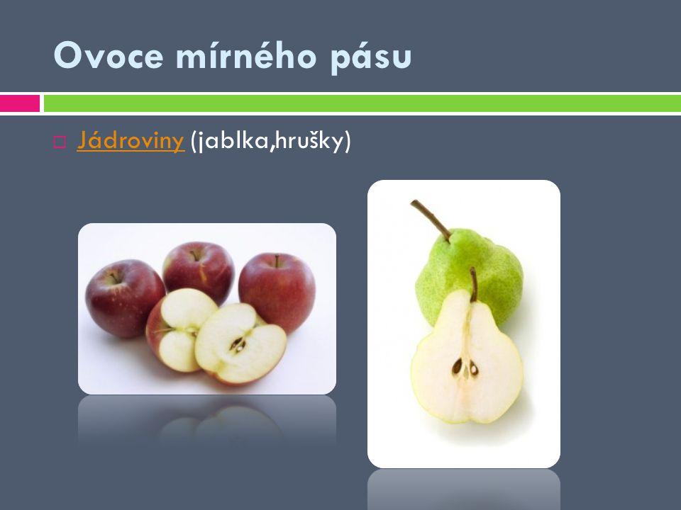 Ovoce mírného pásu  Jádroviny (jablka,hrušky) Jádroviny