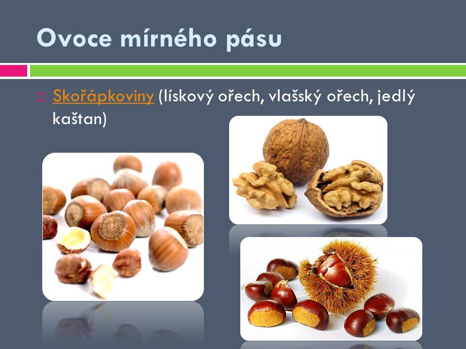  Skořápkoviny (lískový ořech, vlašský ořech, jedlý kaštan) Skořápkoviny Ovoce mírného pásu