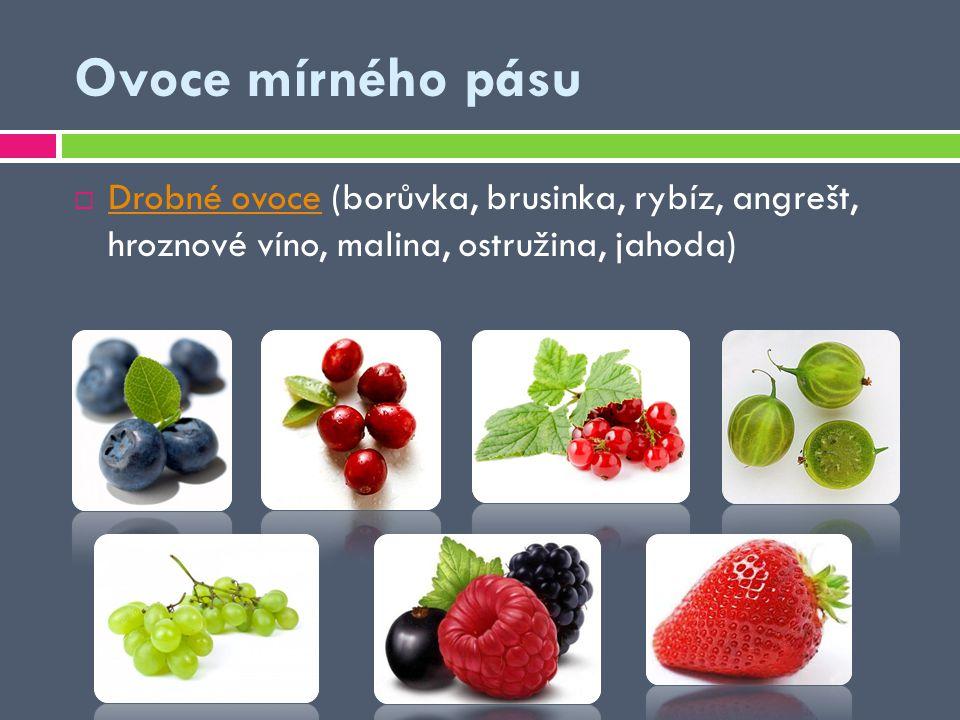  Drobné ovoce (borůvka, brusinka, rybíz, angrešt, hroznové víno, malina, ostružina, jahoda) Drobné ovoce Ovoce mírného pásu