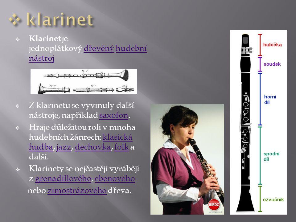  Klarinet je jednoplátkový dřevěný hudební nástrojdřevěnýhudební nástroj  Z klarinetu se vyvinuly další nástroje, například saxofon. saxofon  Hraje